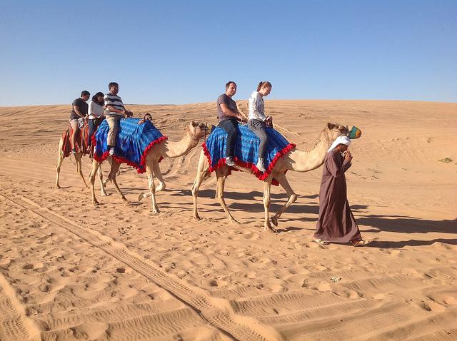 Camel Rides In Dubai Camel Riding in Dubai ...