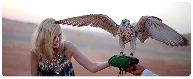 falcon show dubai, falcon dubai, desert safari dubai, safari dubai, dubai desert safari, dubai flacon show - 05