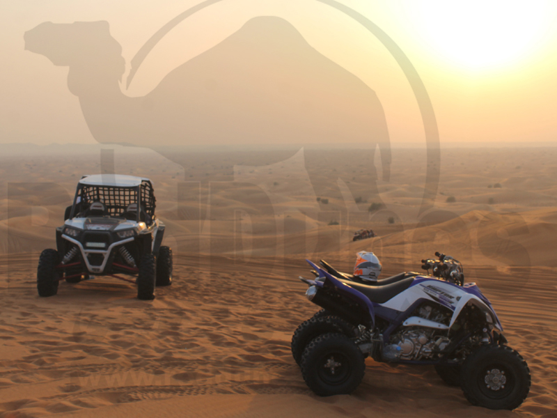 quad bike dubai atv bike dubai desert safari dubai. Black Bedroom Furniture Sets. Home Design Ideas